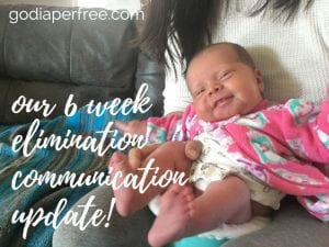 6 week elimination communication update