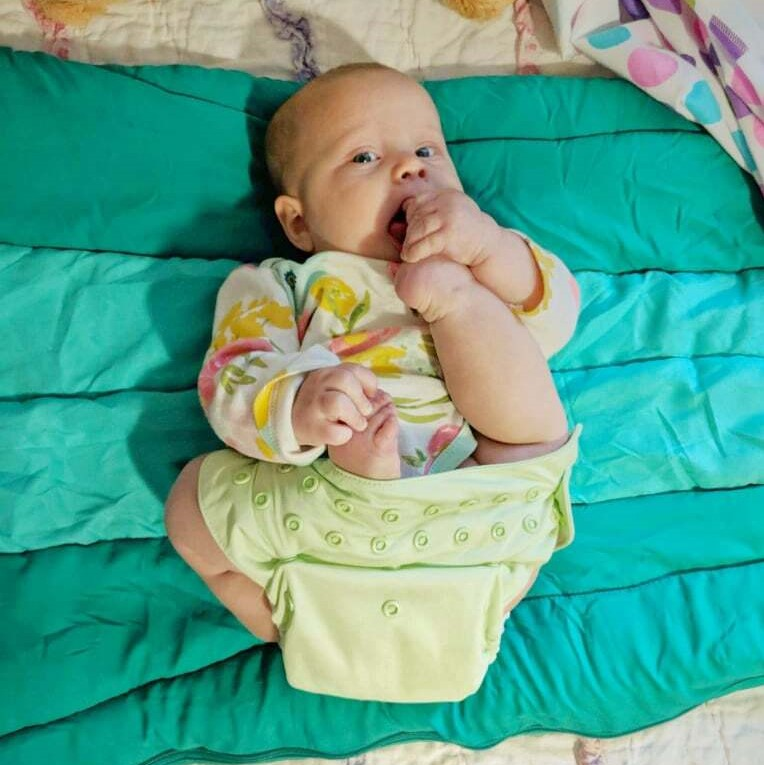Disposables vs compostables vs cloth diapers What's the best diaper for elimination communication