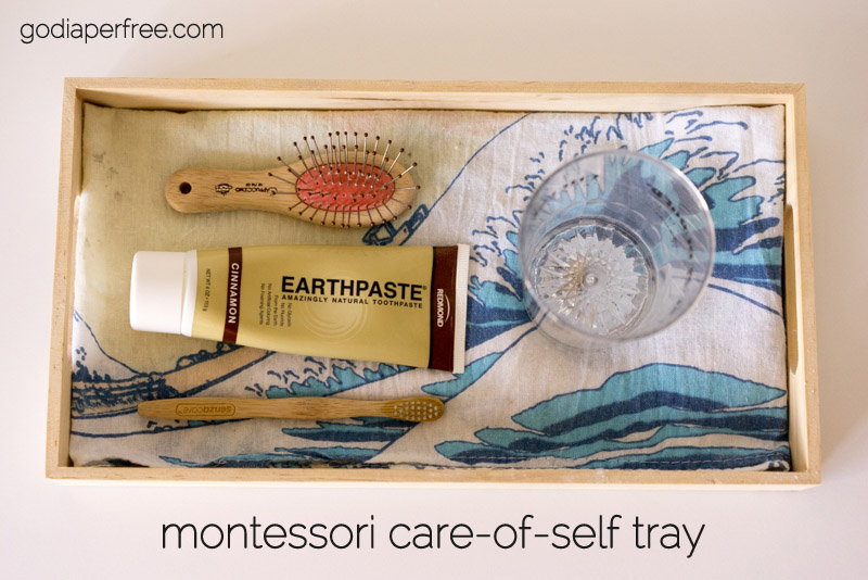 Montessori_Care_of_Self_Tray