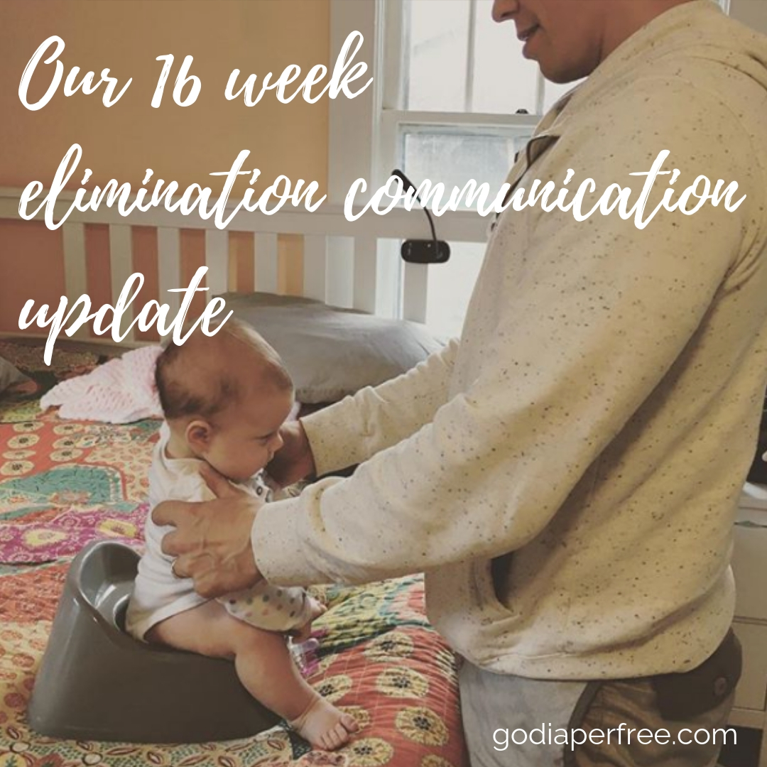 Twyla's 16 week elimination communication update
