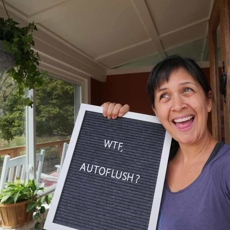 fear of the autoflush toilet